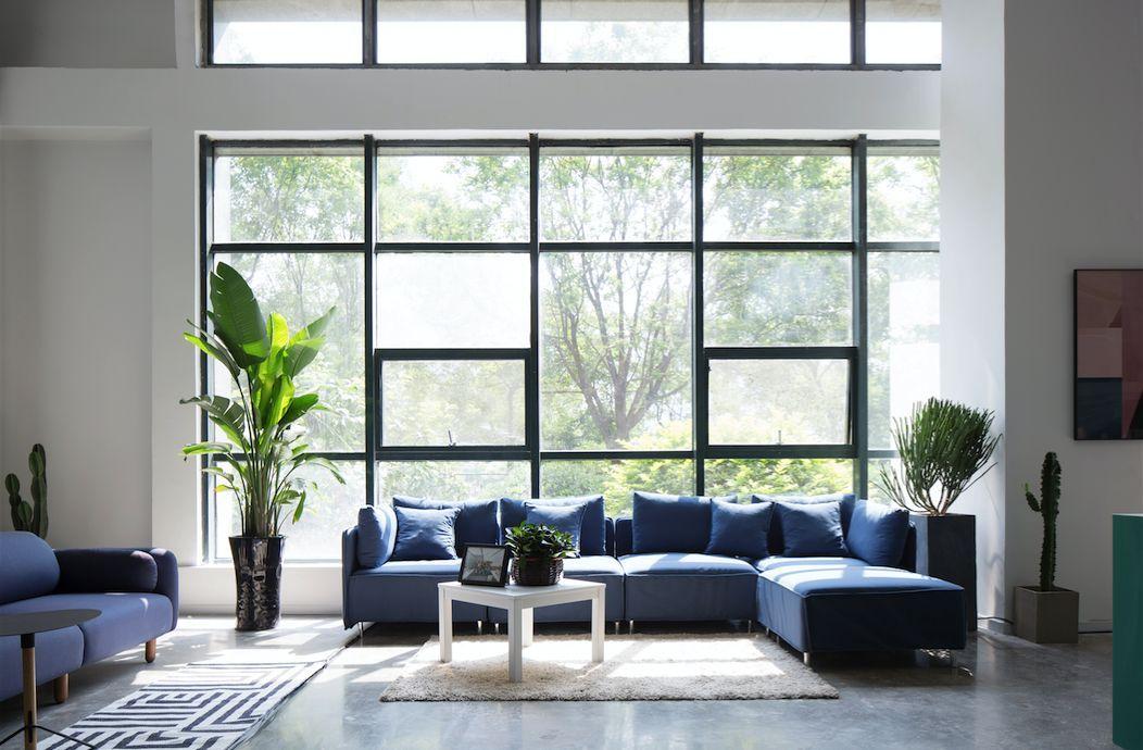沙发背景墙风水画 如何选择才能更旺财