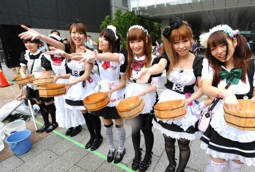 日本的女仆文化讓人驚訝,稱呼顧客為主人,甚至可以跪地服務客人