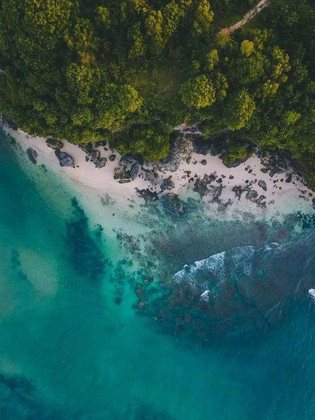 最适合全家出游的地方,为什么是东南亚?