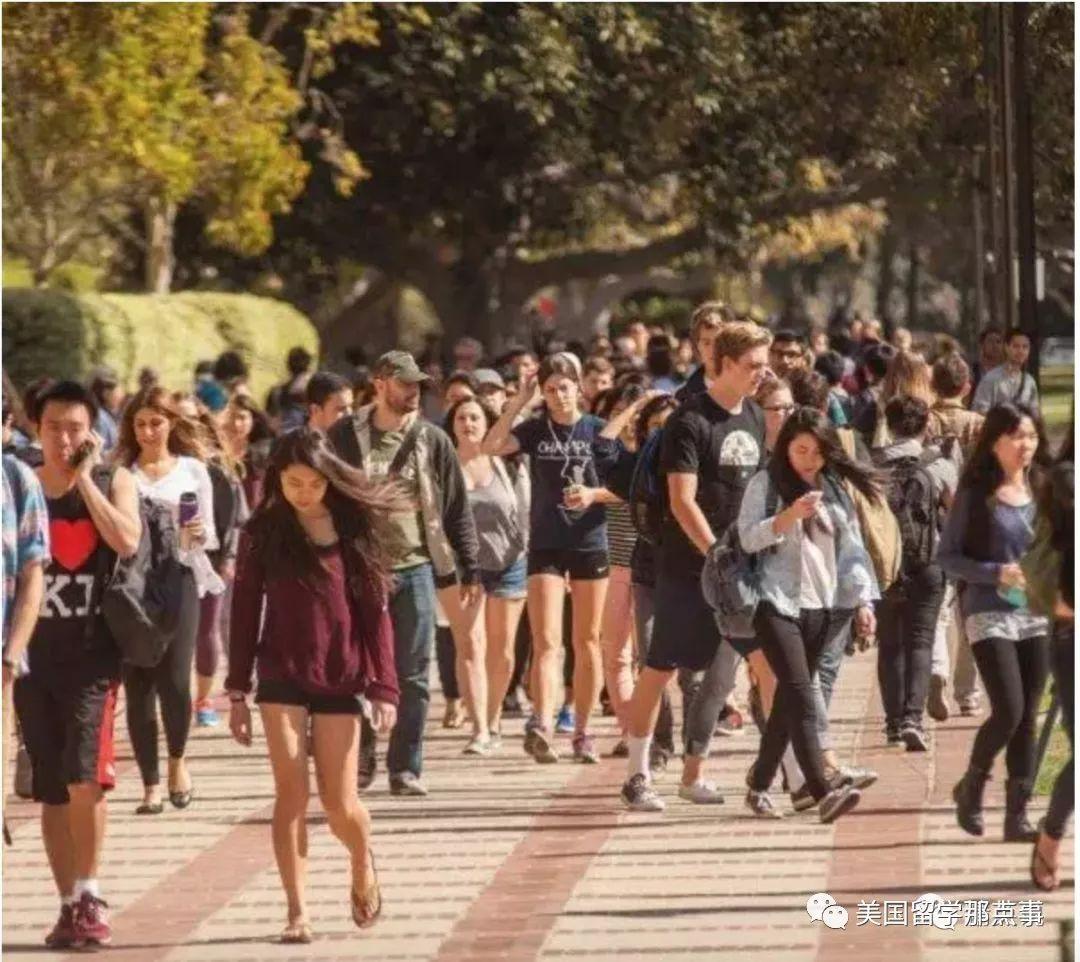 """""""我考上名校,然后呢?""""纪录片跟踪哈佛、哥大、牛津三位中国学生,光鲜背后是一地狼藉"""