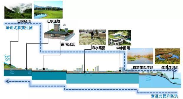 蓉江新区详细规划图