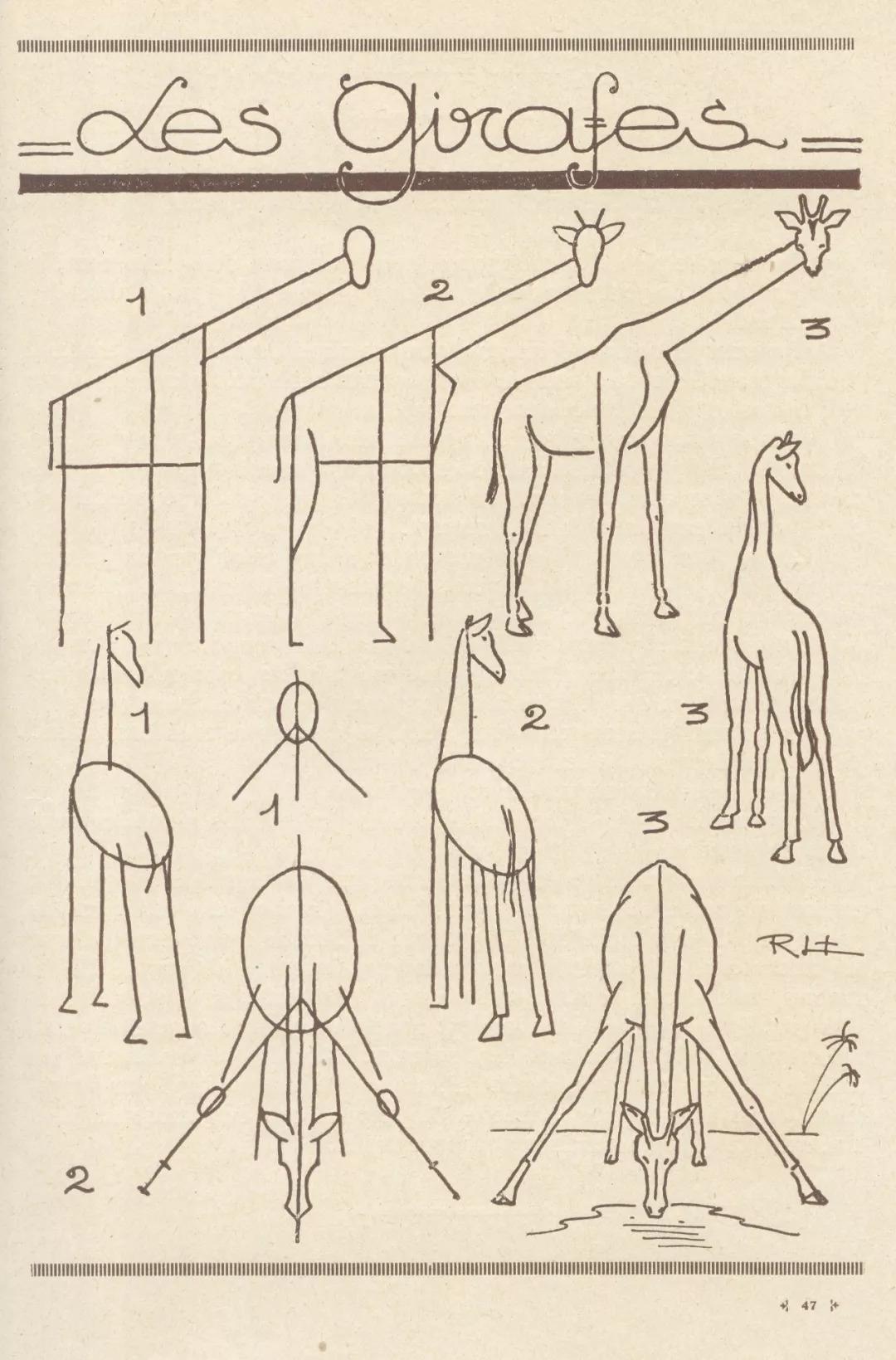 1分钟,5个步骤,轻松画出猫狗兔蝴蝶大象各种小动物 这些简笔画的小教程,真的又实用又可爱 线条