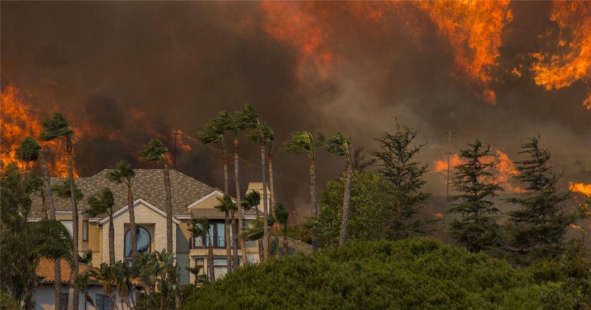 你携风带火而来,留下了满目尘埃——山火山火你还要带走多少人?