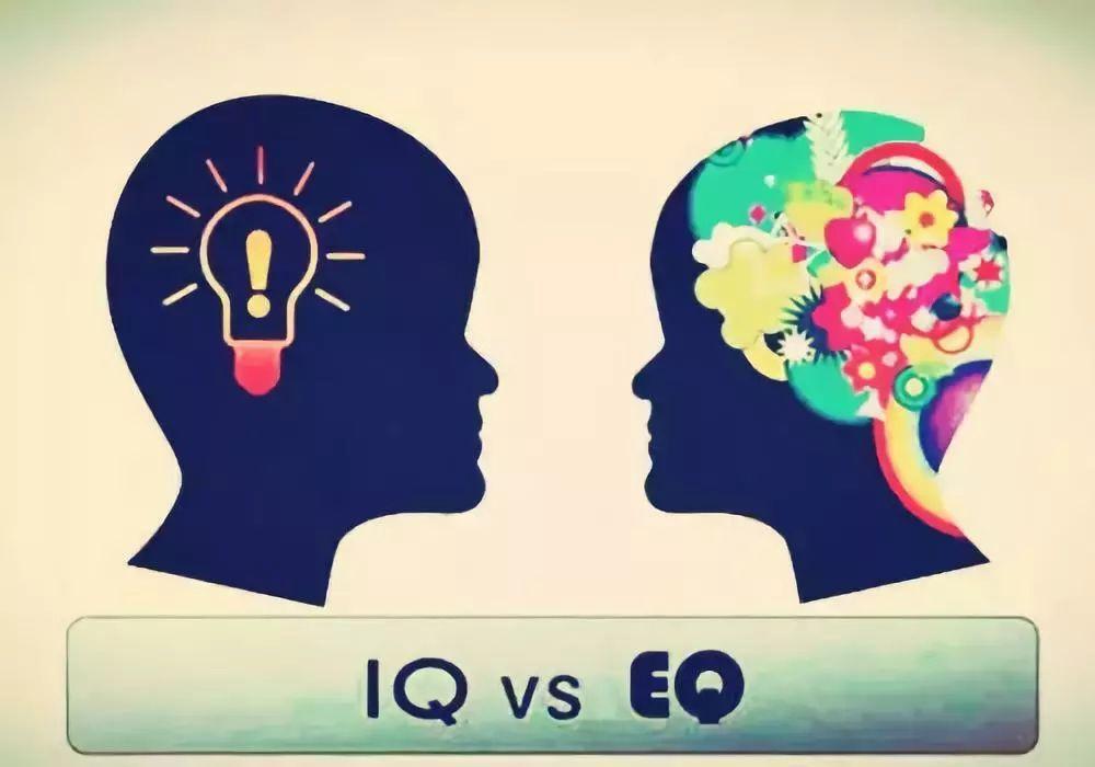 智商高,情商低,并不一定能拥有好的社交或者成功,反之,即使没有很高的
