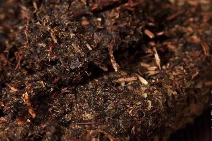 胃溃疡可以喝绿茶吗图片
