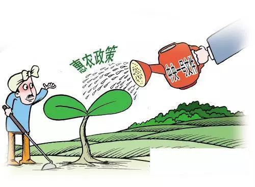 湖南:现代化农业为乡村焕发光彩,促进农民增收