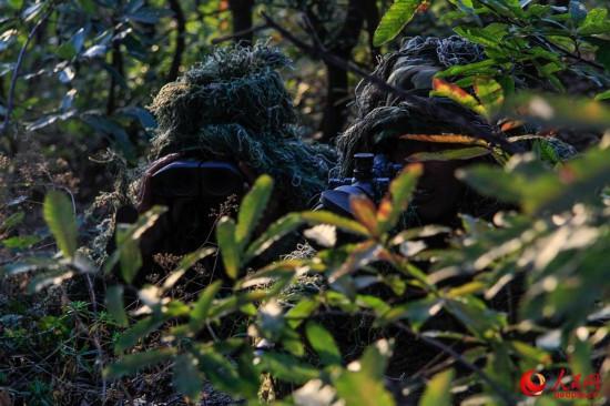 澳门新濠天地娱乐场武警某部密林深处展开集训_锤炼狙击手必杀技能