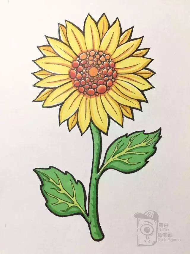 简笔画教程,零基础超详细步骤起型,马克笔画一朵暖暖的向日葵