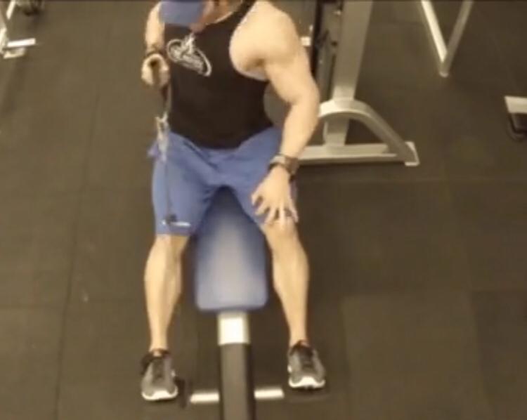 顶峰人体裸体艺术_30天超级减脂健身计划——背部塑形训练