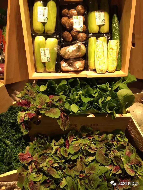 西安有机蔬菜配送方便到家l我家菜园 - 陕西西安食品信息