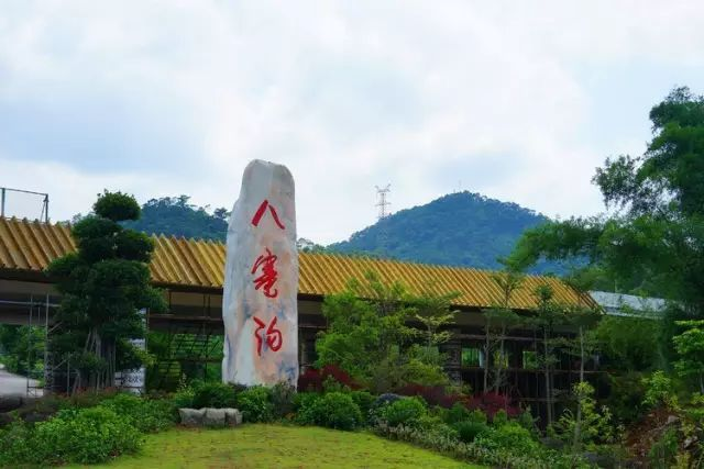 八寨沟发源于广西十万大山,是天然的森林氧吧,走在八寨沟内,轻轻松松