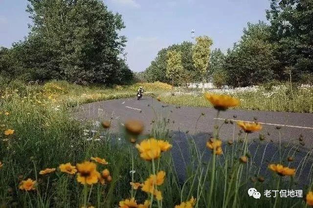 尋找最美自駕鄉村公路,收集了九條,總有一條讓你窒息!