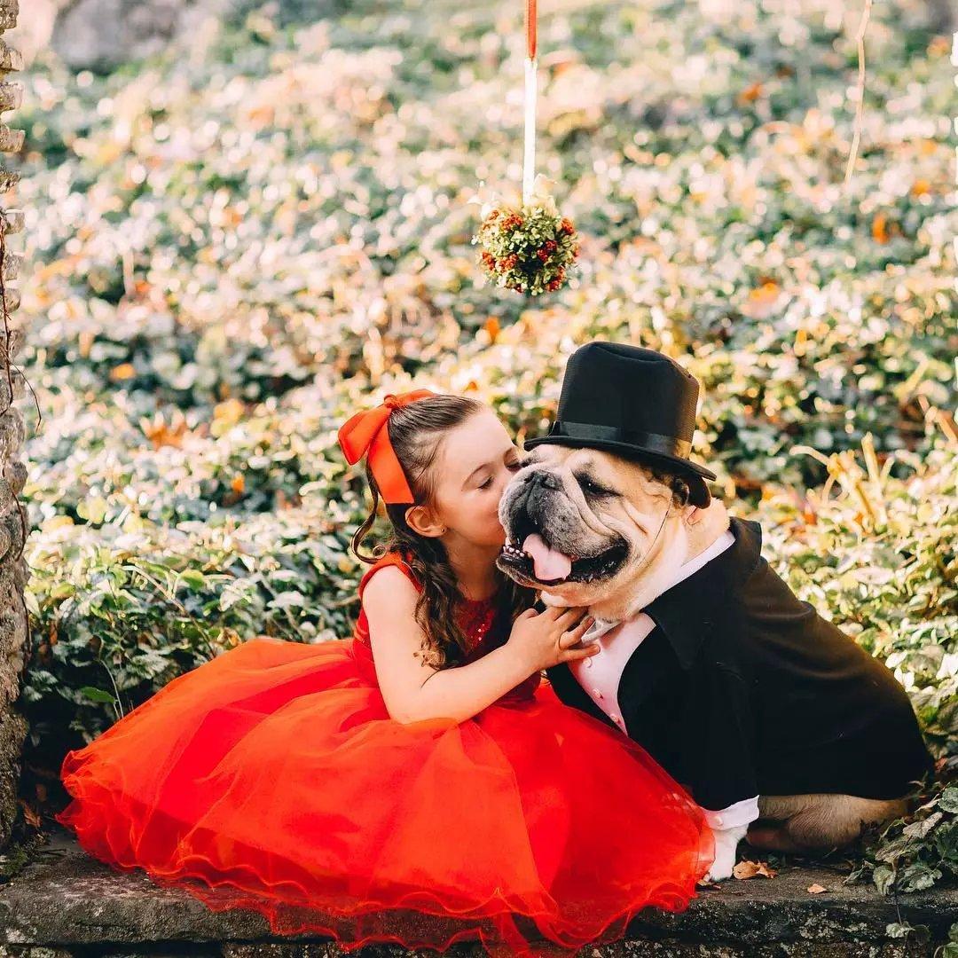 这小女孩是斗牛犬看着长大的,如今她5岁它7岁感恩节感恩有你!