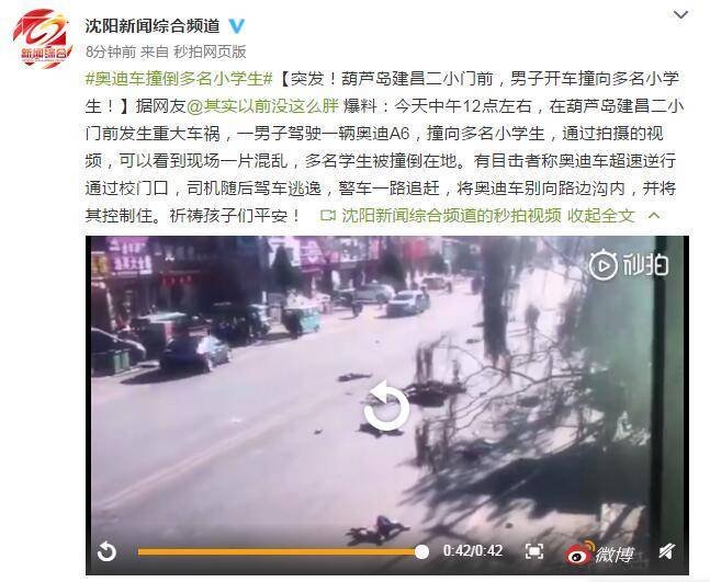辽宁多名学生被撞,犯罪嫌疑人驾奥迪A6乡下逃跑被捕