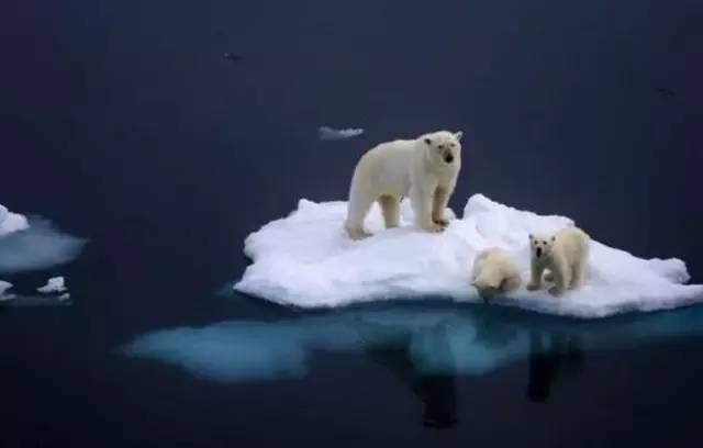 全球变暖是一场骗局吗?