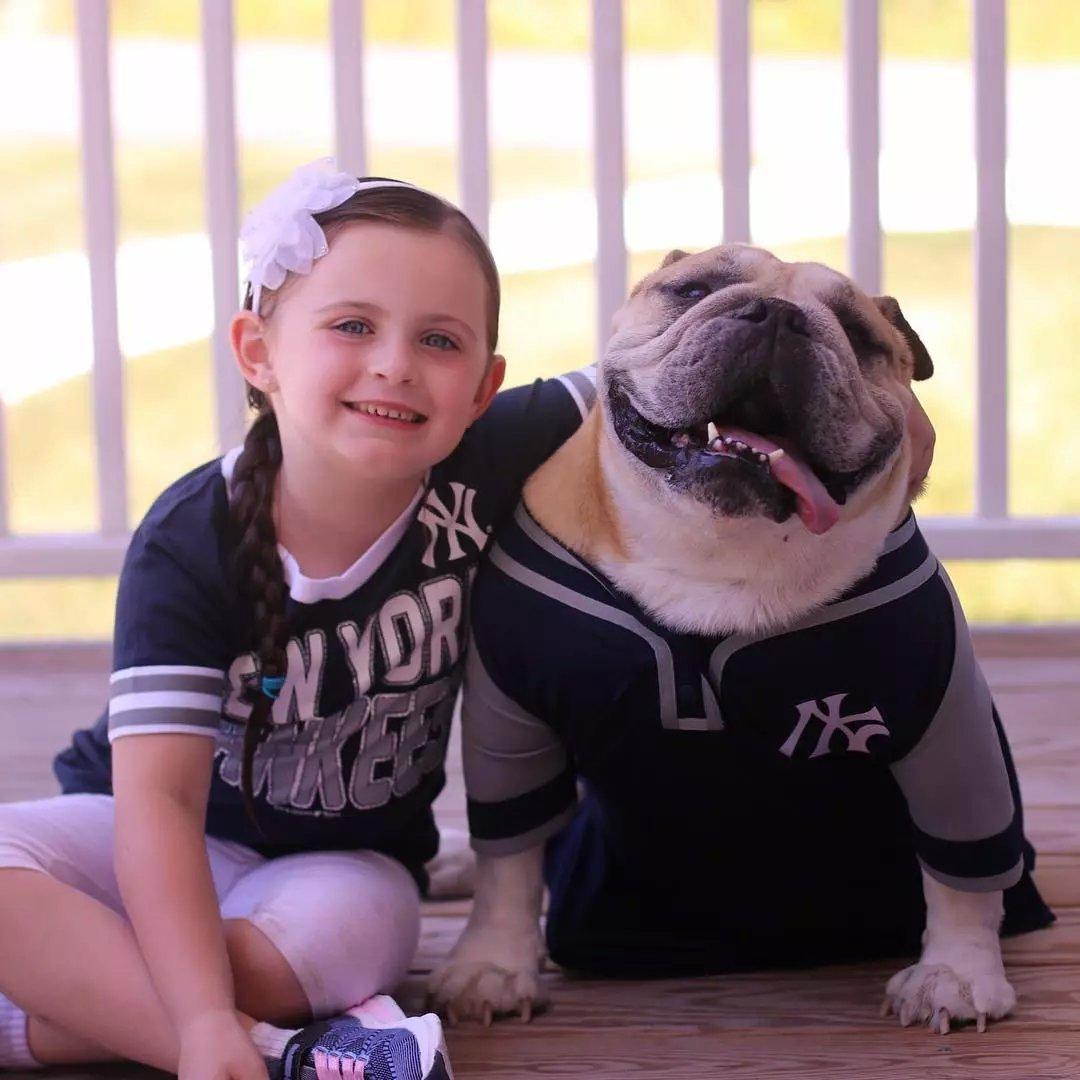 原创 这小女孩是斗牛犬看着长大的,如今她5岁它7岁感恩节感恩有你!