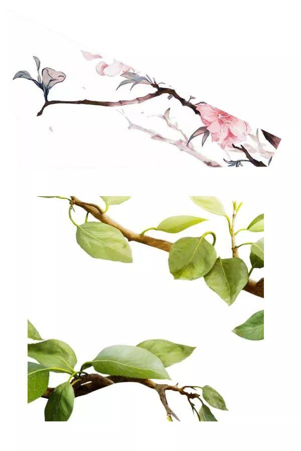 设计中国风茶叶宣传海报