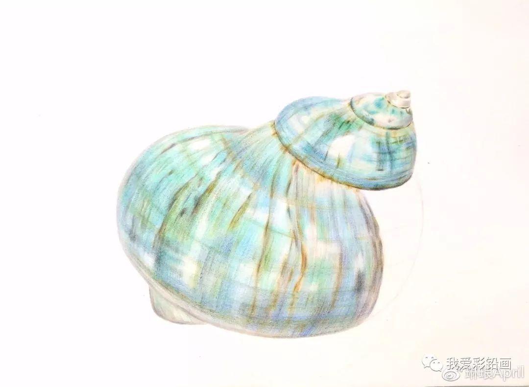 【教程】彩铅手绘~绿蝾螺