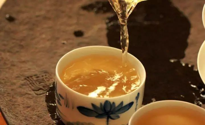 特性香菇茶生姜9608品种红枣图片