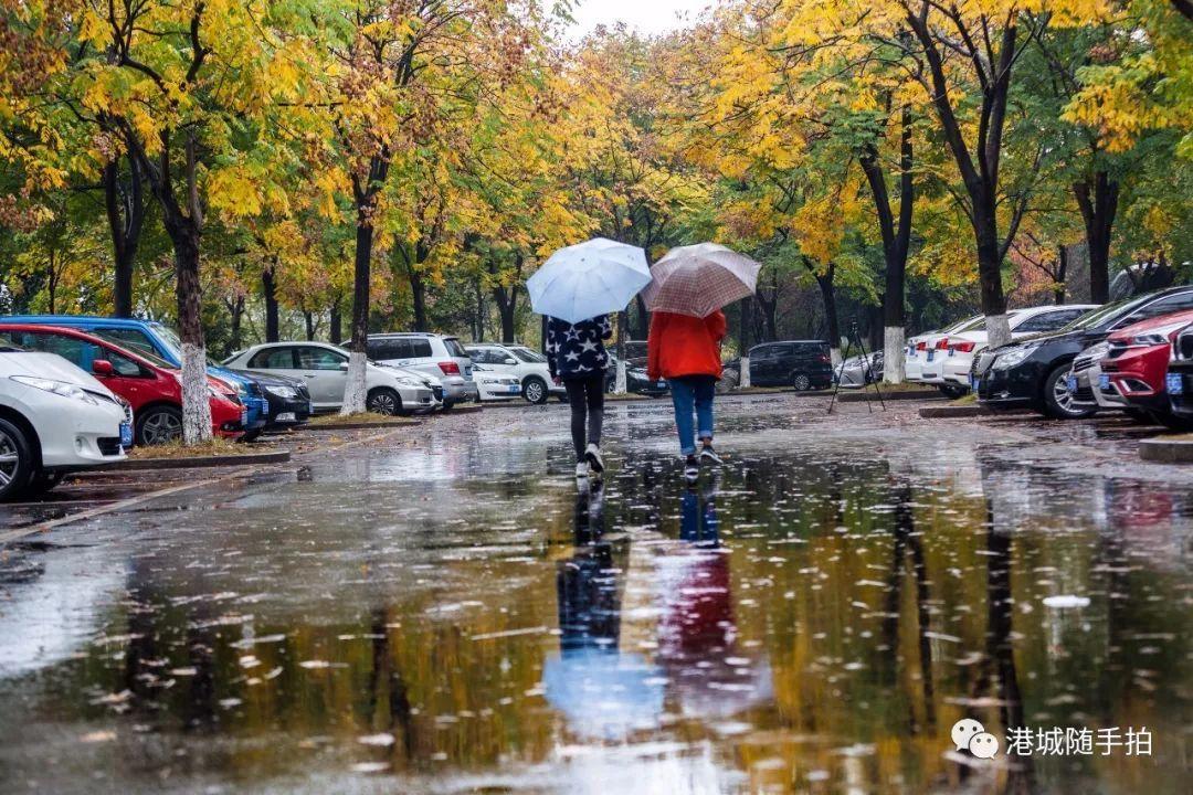 公益 正文  2,11月13日,暨阳湖,徜徉在清晨的第一缕阳光下,仿佛置身