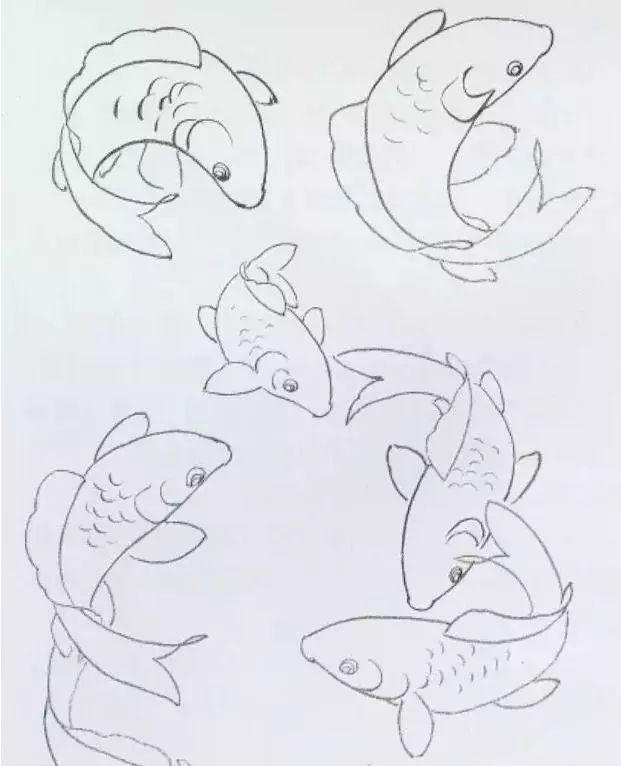 用铅笔或炭笔打好鲤鱼的动态造型稿,然后先拷贝到宣纸上,用淡墨勾线