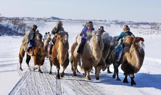 燃情冰雪 温情牧歌2018锡林郭勒冬之旅启动