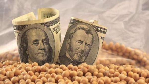 美国豆农赌输了