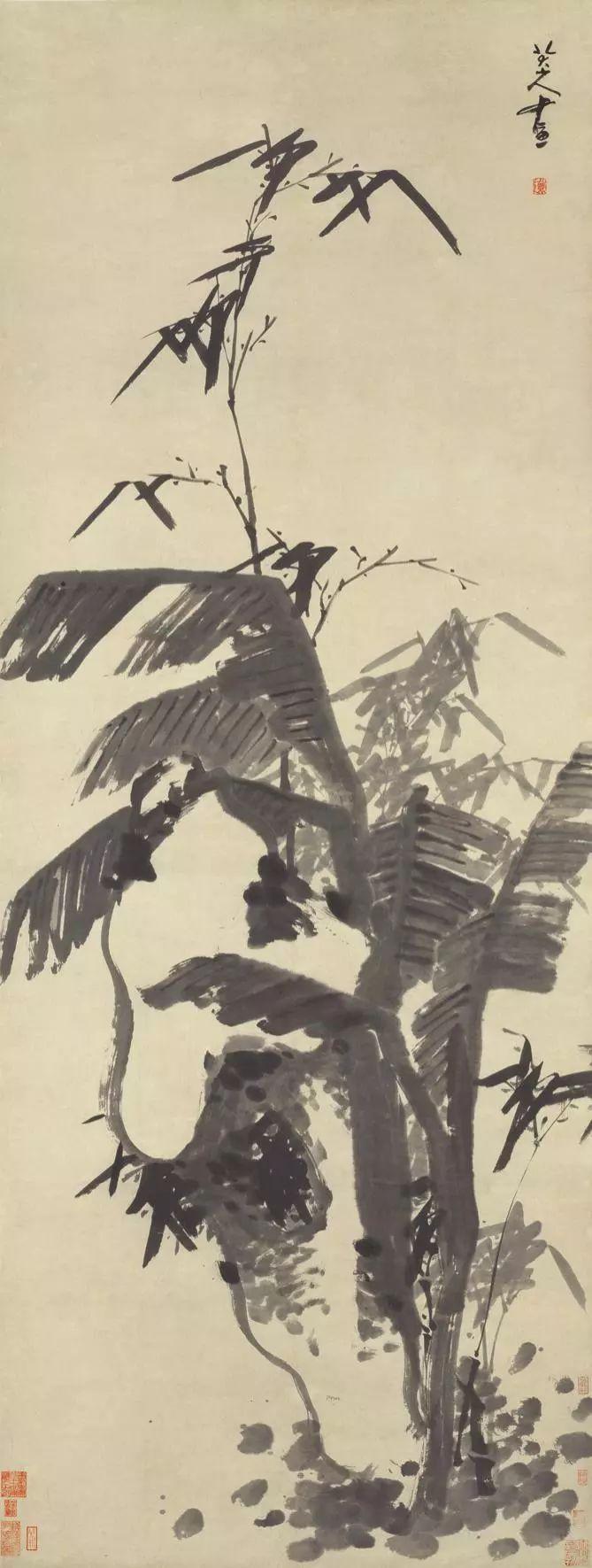 芭蕉竹石图 八大山人 清图片