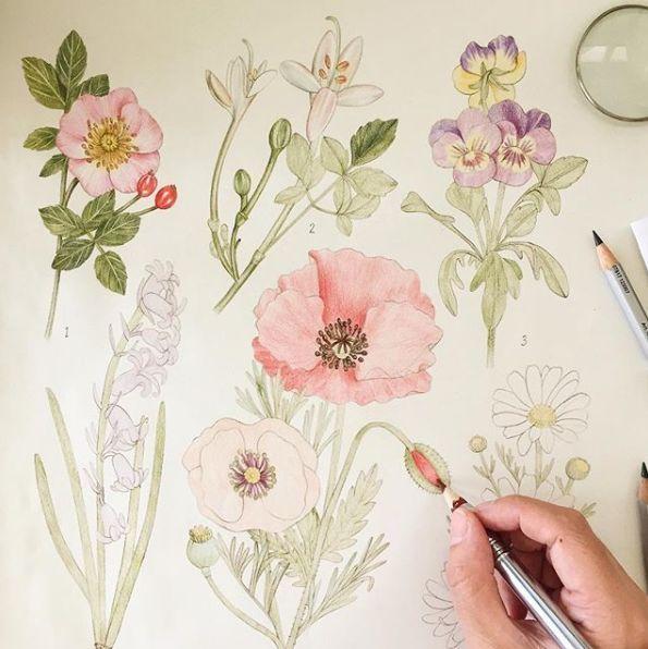 植物 涂色图 手绘墙