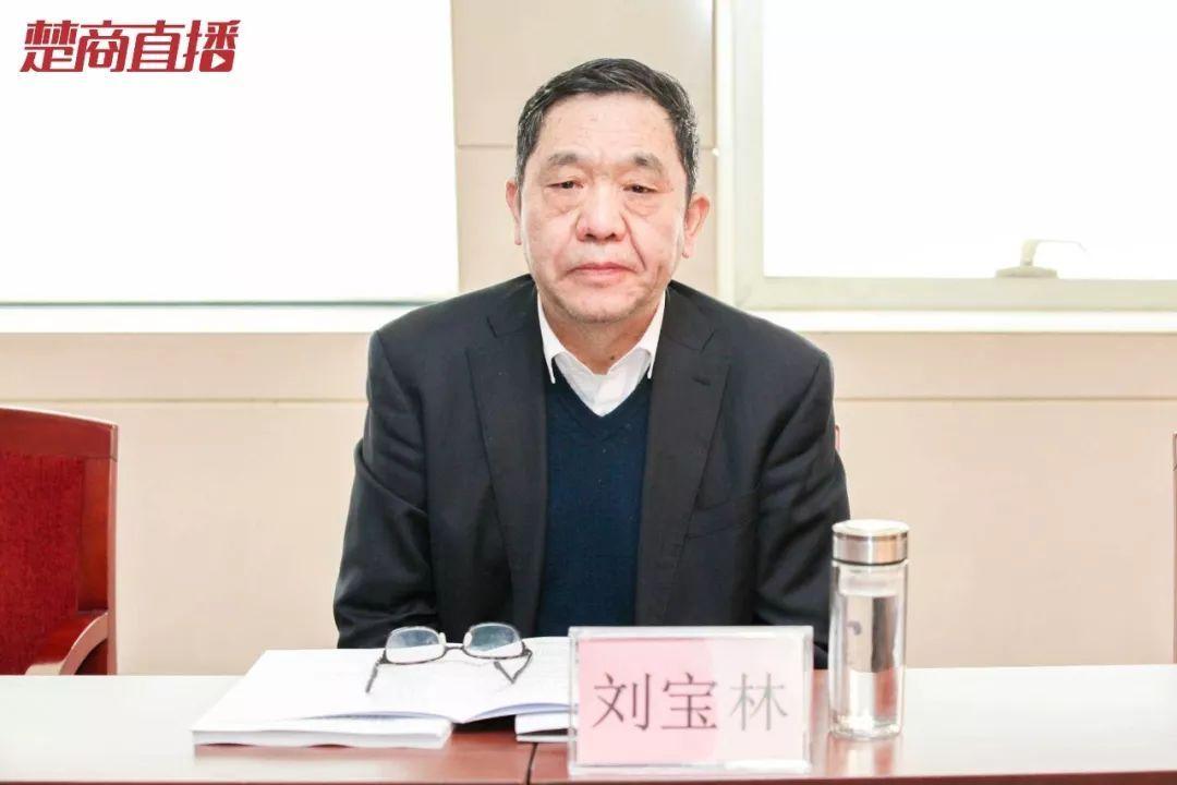 湖北省楚商联合会执行会长,九州通医药集团董事长刘宝林图片