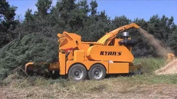生活 正文  进一步调查后人们发现,证人所描述的大型碎木机只有两台