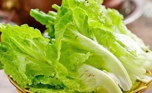 能保护眼睛 缓解眼睛干涩与疲劳 最最重要的 减肥 花叶生菜中图片