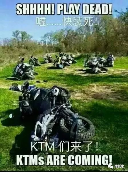 """国产""""炒冷饭""""宝马""""大甩卖""""KTM又来""""搞事""""你怎么看的呢?"""