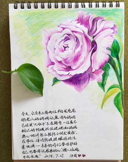 """济南女记者孕期手绘29幅漫画送给双胞胎女儿当""""见面礼"""""""