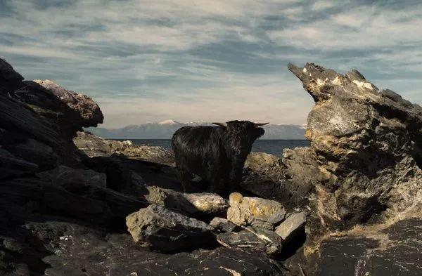 Petros Koublis:希腊郊外的诗