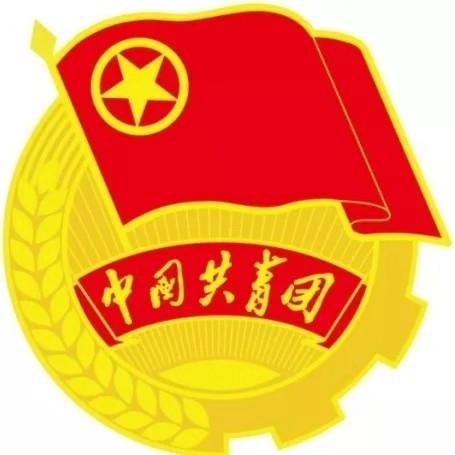 团市委书记谢澎调研夏县共青团工作