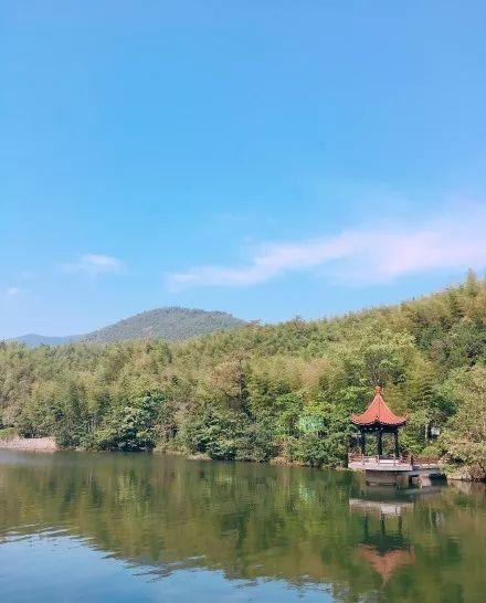 宜兴竹海风景区上接苏南第一高峰, 下有镜湖秀色, 风景区含山峰,丘陵