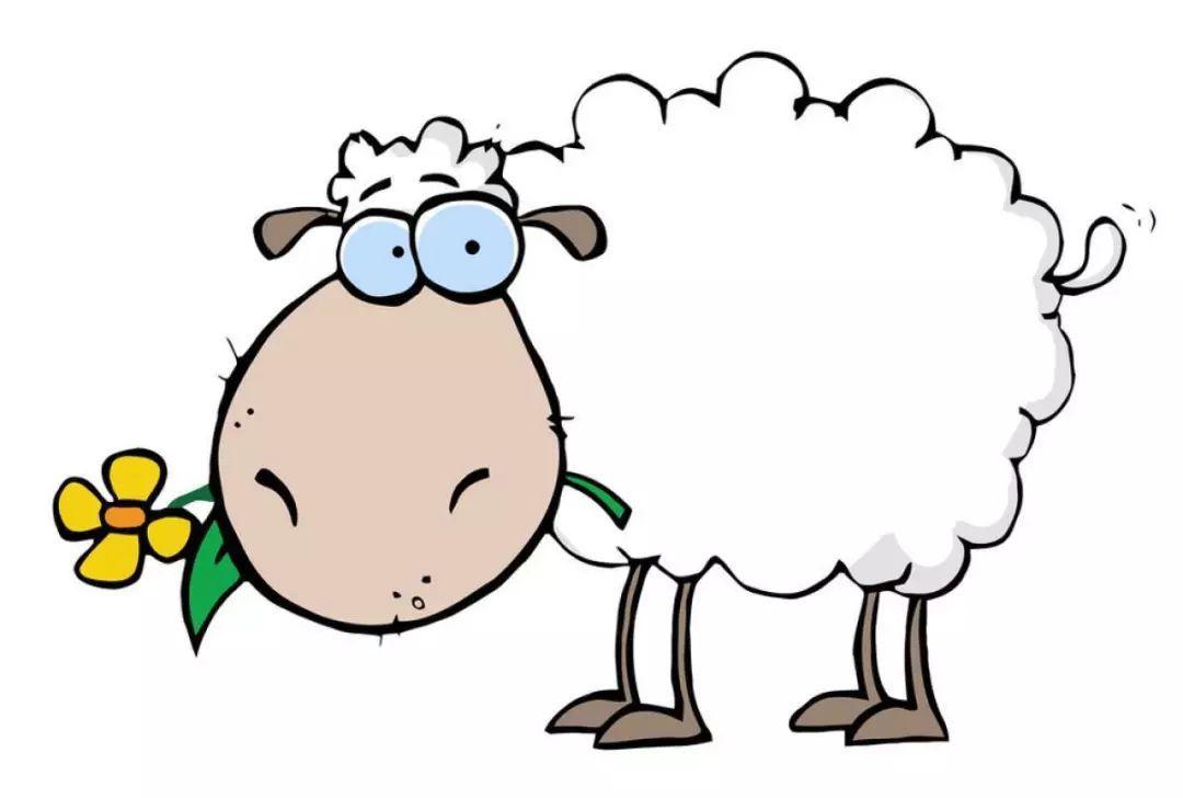 羊棚设计图片
