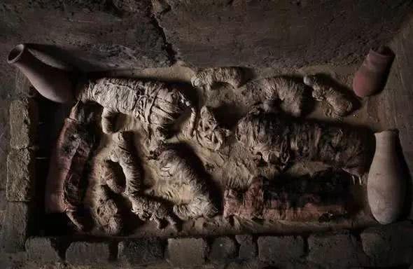 """4500年前的埃及古墓被打开:""""木乃猫""""新鲜出土!还有圣甲虫、眼镜蛇…"""