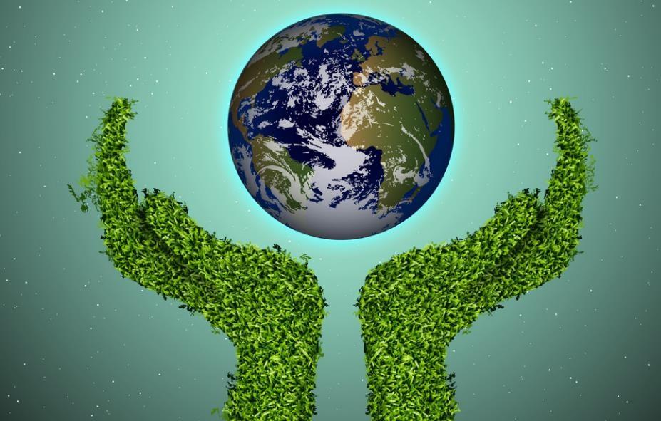 高考疑问解答 环境科学毕业生去支付宝种树,发生了什么