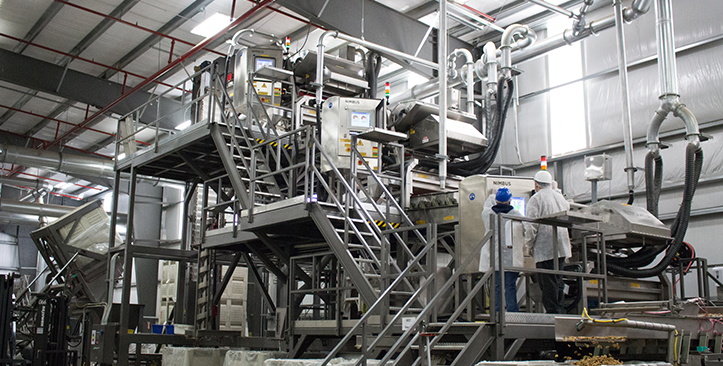 临安阿康食品:技术助力发展,致力做中国最好的核桃加工企业
