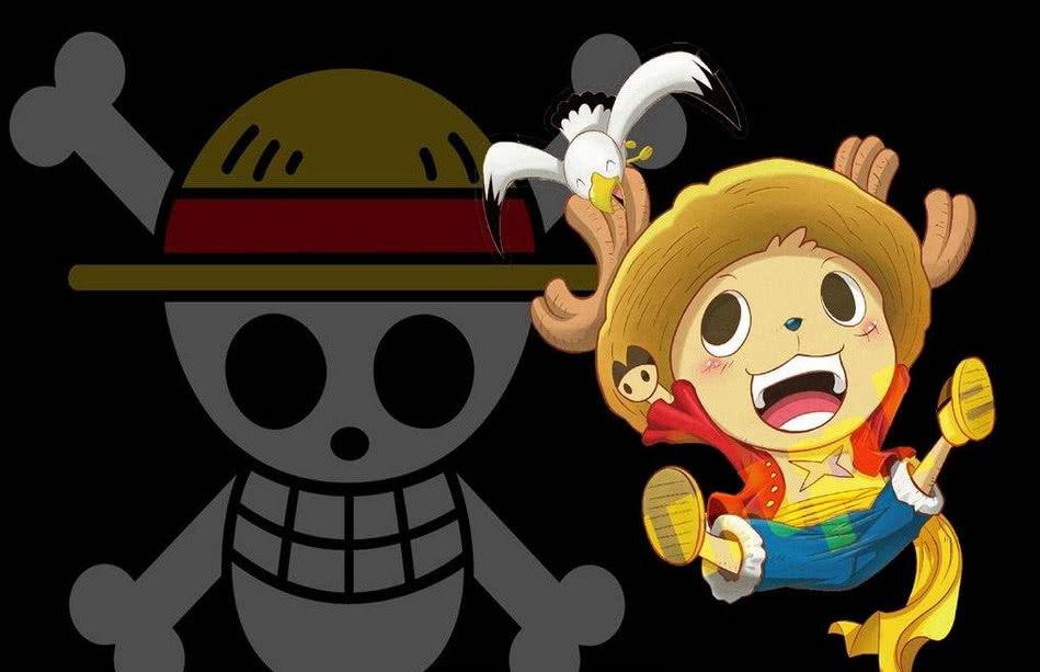 海賊王:實力最強的五個動物,狗貓聯手才第二,第一秒殺十億海賊 1