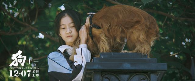電影《狗十三》教會我們如何與父母和解
