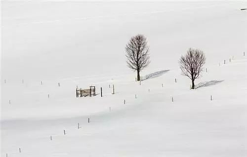 節氣 大雪已至仲冬始,寒冷天氣慎防心梗!