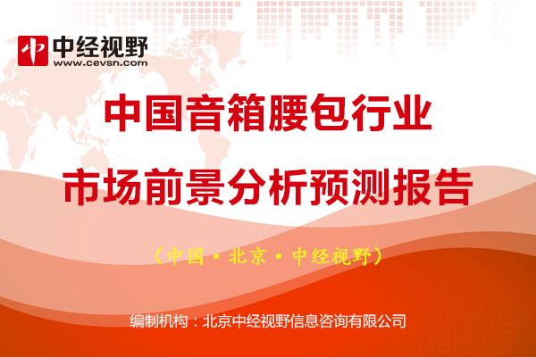 中國音箱腰包行業市場前景分析預測報告