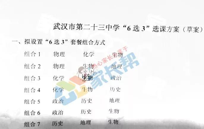 武汉这几所国际正式选课!科上海领位置高中高中图片