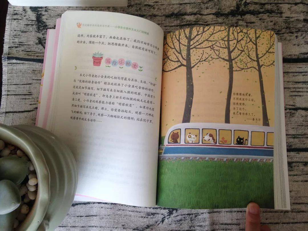 教育 正文  03 精美手绘图 为孩子开启诗意写作之旅 每本书中都有大量
