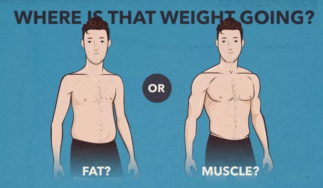 怎么把肚子上的脂肪减下去?专门针对腹部脂肪的。