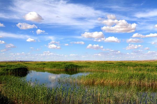 """干枯半个世纪的湖泊复苏,""""复生""""后美出了新高度"""