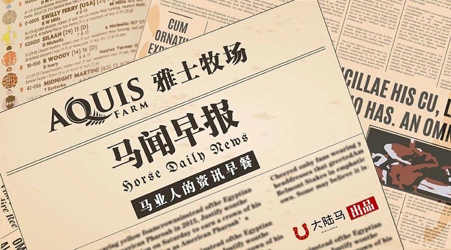 "Aquis雅士牧场赛马新闻:日本德比冠军""金之霸""11293"